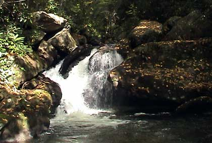 Waterfall at Bear Creek Lake