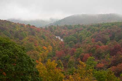 View of Graveyard Fields showing fall colors and waterfall