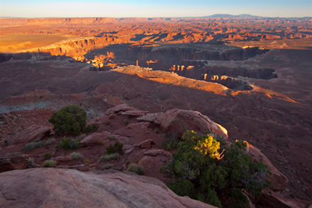 Grand View Point Canyonlands National Park