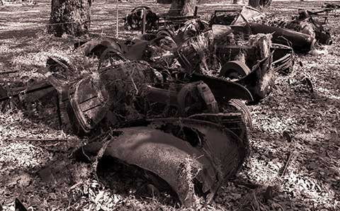 Junked cars at Cumberland National Seashore