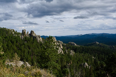 View of Black Hills Custer State Park, SD