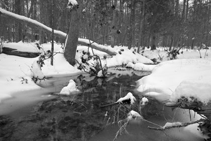 Black and White photo of Crooked Run Creek and Snow of 2010