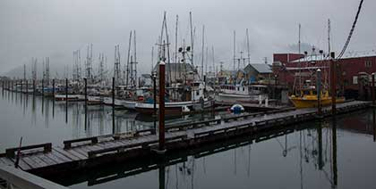 Boats in Garibaldi Harbor