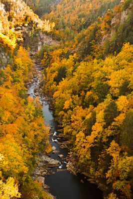 Tallulah Gorge showing water and fall colors