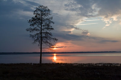 Sunset Lake Mattamuskeet