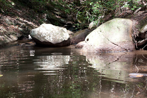 Rocks in small stream entering Lake Yonah