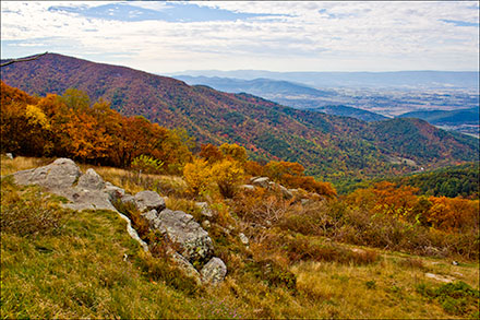 View from Skyline Drive in the fall. Fall colors and Peidmont valley