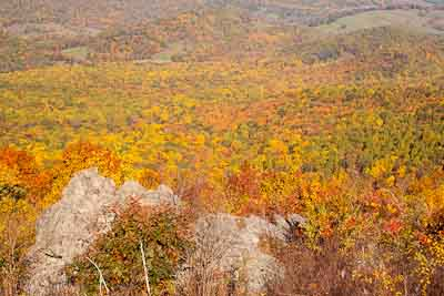 Fall Colors viewed from Skyline Drive